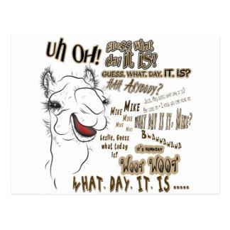 Camello del día de chepa postales