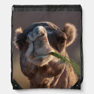 Camello del día de chepa que festeja en hierba mochila