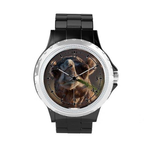Camello del día de chepa que festeja en hierba relojes de mano