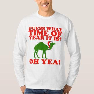 Camello del navidad en suéter del gorra de Santa