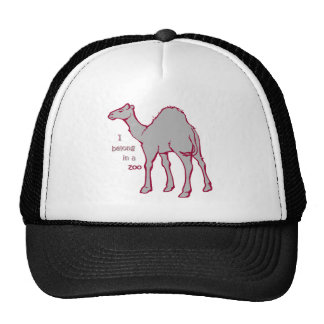 Camello del parque zoológico gorras de camionero