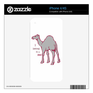 Camello del parque zoológico iPhone 4 skins