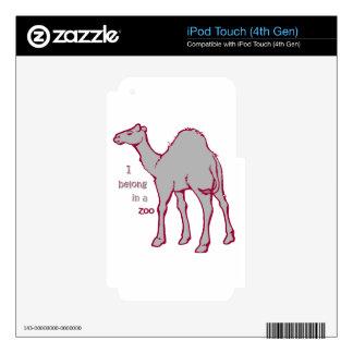 Camello del parque zoológico iPod touch 4G skin