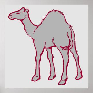 Camello del parque zoológico impresiones