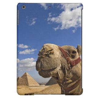 Camello delante de las pirámides de Giza, Egipto, Funda Para iPad Air