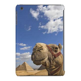 Camello delante de las pirámides de Giza, Egipto, Fundas De iPad Mini Retina