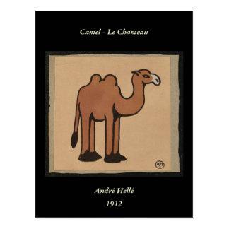 Camello - ejemplo de libro anticuario colorido postal