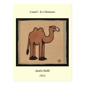 Camello - ejemplo de libro anticuario colorido tarjetas postales