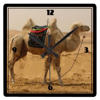 Camello en el desierto reloj cuadrado