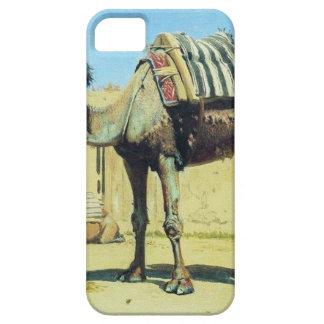 Camello en el patio de la caravanseray por Vasily iPhone 5 Funda