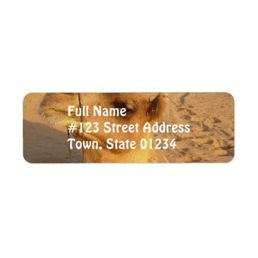 Camello en etiqueta de correo del desierto etiqueta de remite