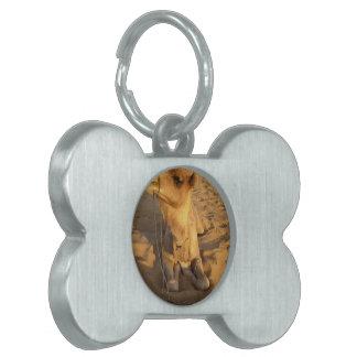 Camello en etiqueta del mascota del desierto placa de nombre de mascota