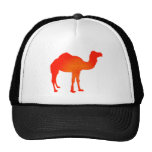Camello en rojo gorras de camionero