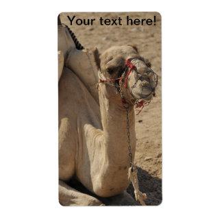Camello Etiquetas De Envío