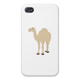Camello iPhone 4 Fundas