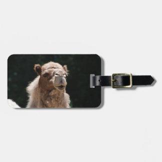 Camello lindo etiquetas para maletas
