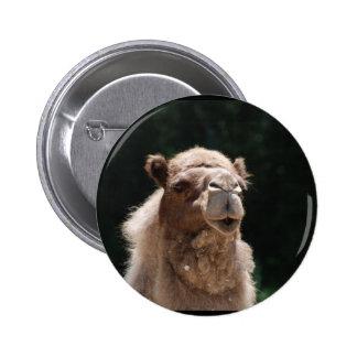 Camello lindo pin redondo de 2 pulgadas