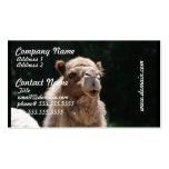 Camello lindo plantilla de tarjeta de negocio