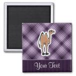 Camello lindo; Púrpura Iman