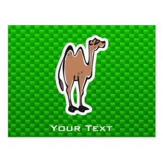Camello lindo Verde Tarjetas Postales