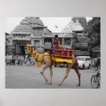 Camello Mano-Coloreado de la fotografía en Puri, O Impresiones
