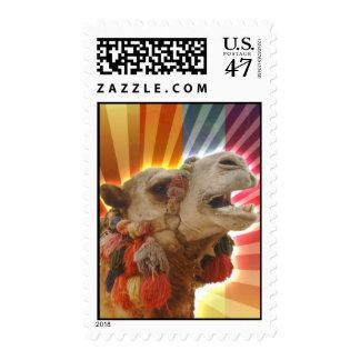 Camello místico estampilla
