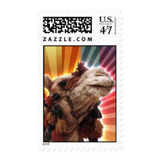 Camello místico estampillas