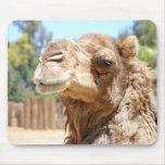 Camello Mousepad Alfombrilla De Ratones