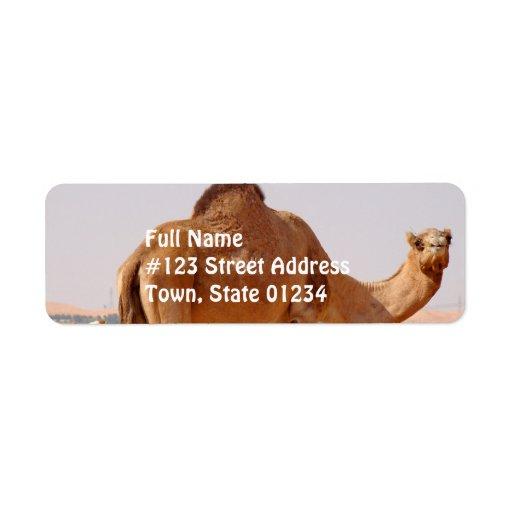 Camello para la etiqueta del remite de los árabes etiqueta de remite
