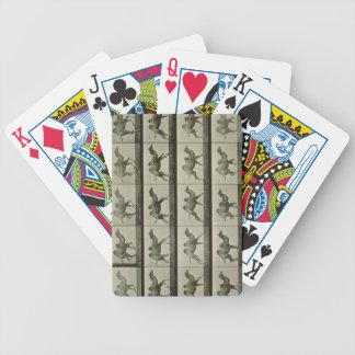 Camello placa de la locomoción animal 1887 b barajas de cartas