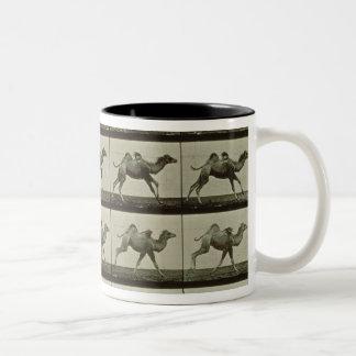 Camello placa de la locomoción animal 1887 b taza