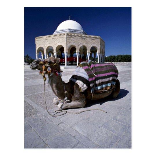 Camello que descansa delante de la bóveda, tarjeta postal
