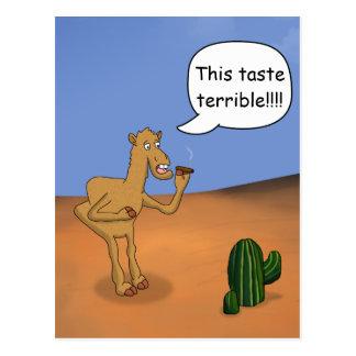 Camello que fuma tarjetas postales