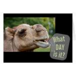 ¿Camello que habla qué día es él? Tarjetas de