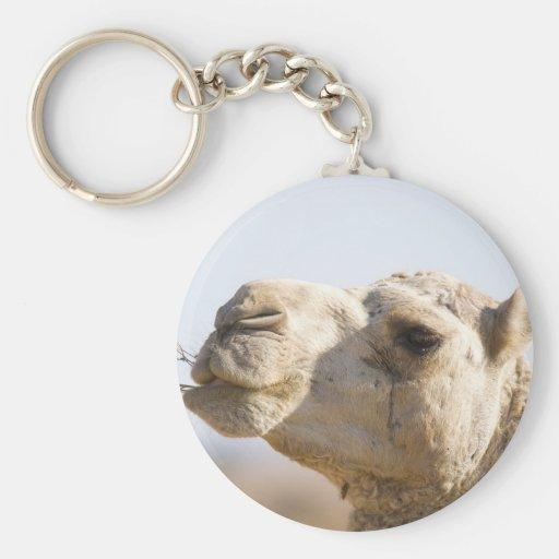 Camello que mastica las flores del desierto llavero redondo tipo pin