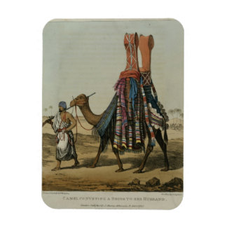 Camello que transporta a una novia a su marido, b  imán foto rectangular