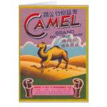 Camello retro de la etiqueta del petardo del kitsc felicitación