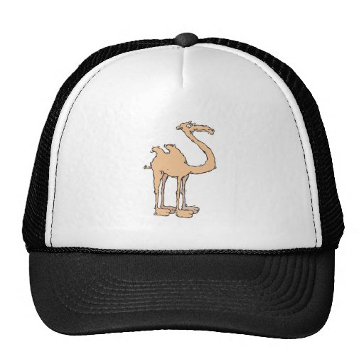 camello tonto del dibujo animado gorras