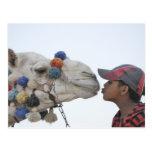 Camello y muchacho postal