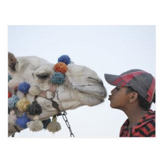 Camello y muchacho postales