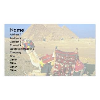 Camello y pirámides, El Cairo, Egipto Plantillas De Tarjeta De Negocio