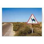 Camellos amonestadores a continuación tarjetón