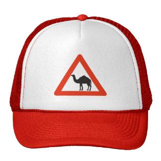Camellos de la precaución, señal de tráfico, gorro