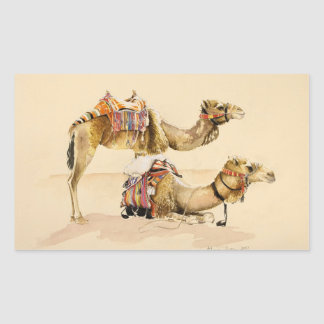 Camellos de Petra 2007 Pegatina Rectangular