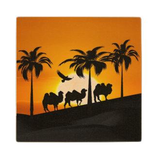 Camellos en la puesta del sol posavasos de madera