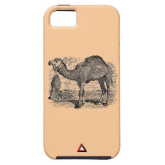Camellos iPhone 5 Carcasa