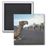 Camellos, Lanzarote Imán