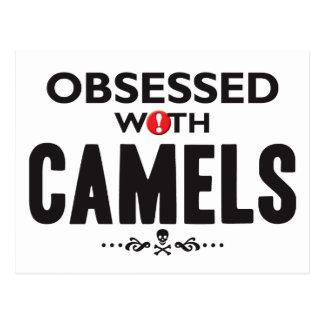Camellos obsesionados postal