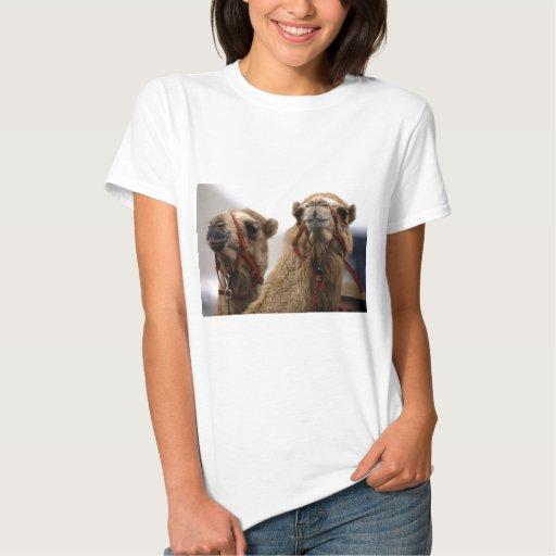 Camellos Polera