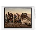 Camellos que paran en el desierto, vintage pH de l Felicitación